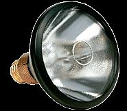 CRL Spot Bulb for Z7596 UV Curing Lamp - Old Style CRL Z100S